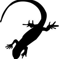 Seth Godin Popularizes Lizard Brain